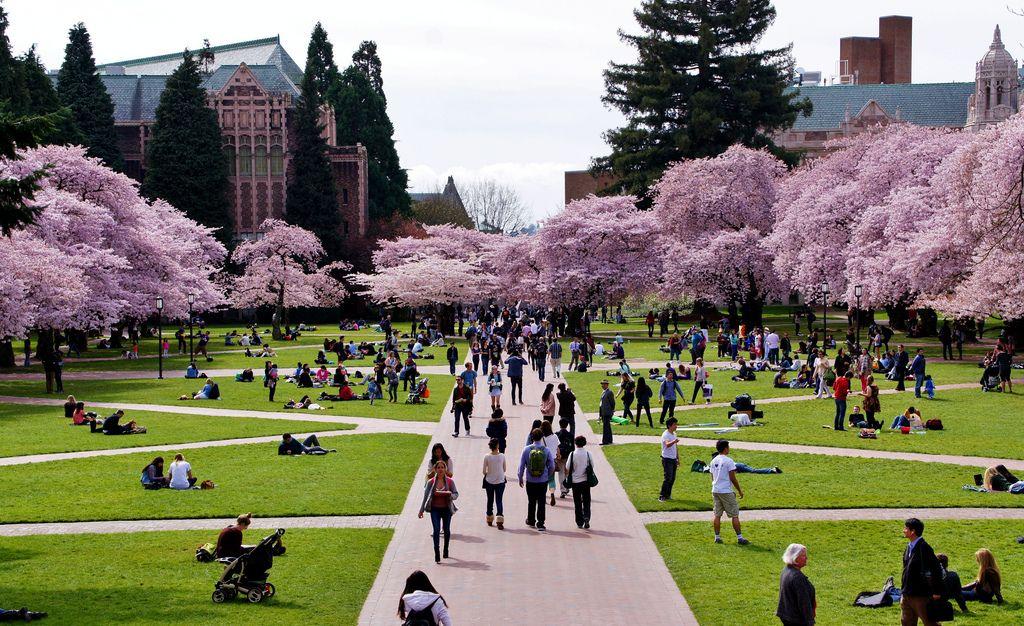 Uni Washington