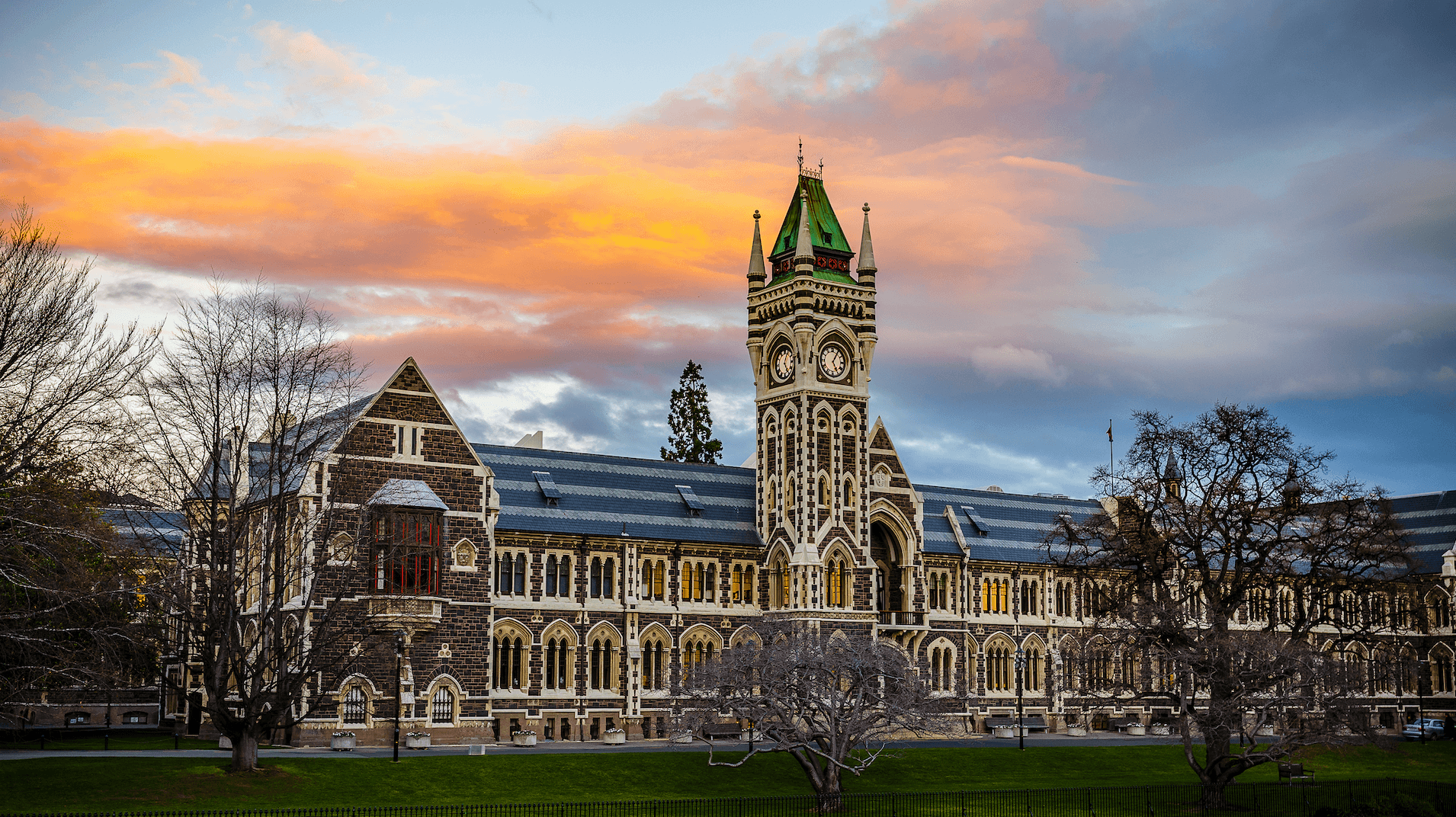Otago Medview