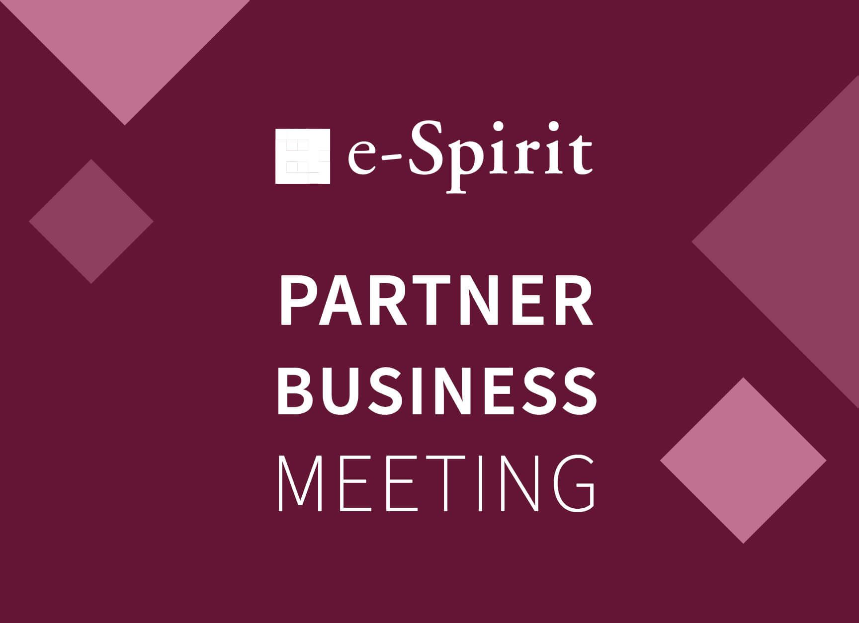 diva-e beim e-Spirit Partner Business Meeting