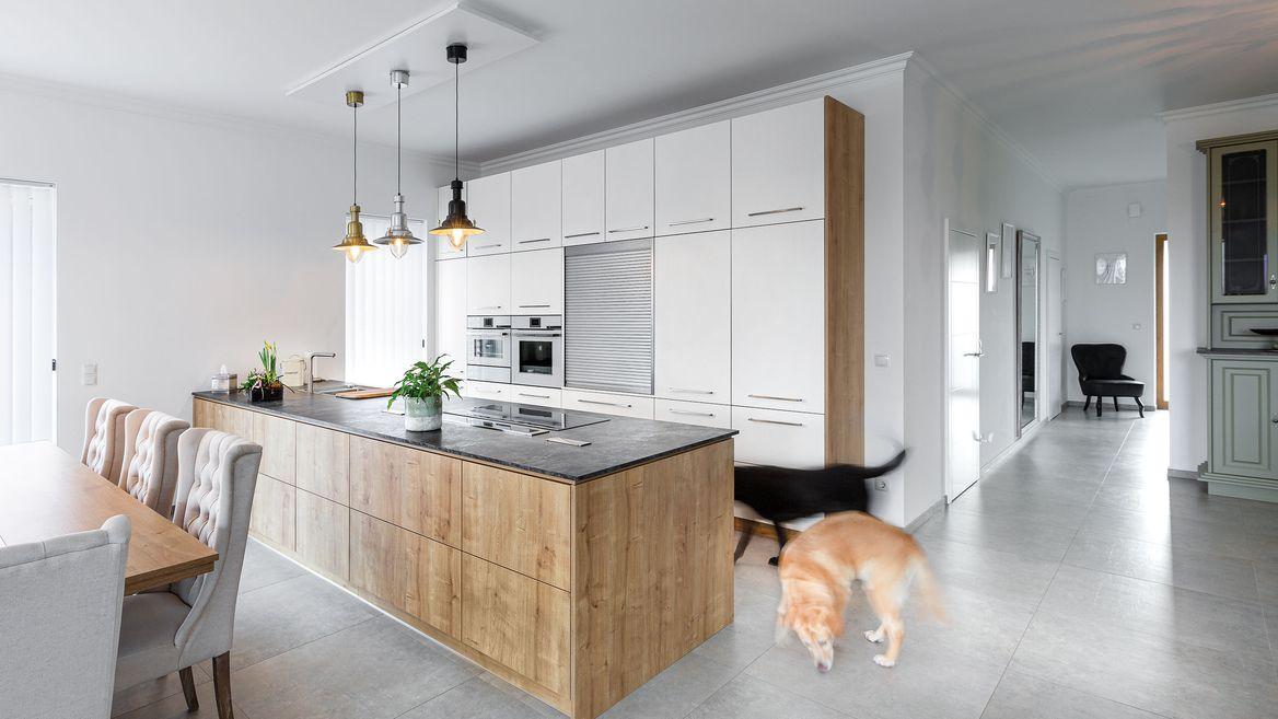 Hunde in moderner P.MAX Küche.