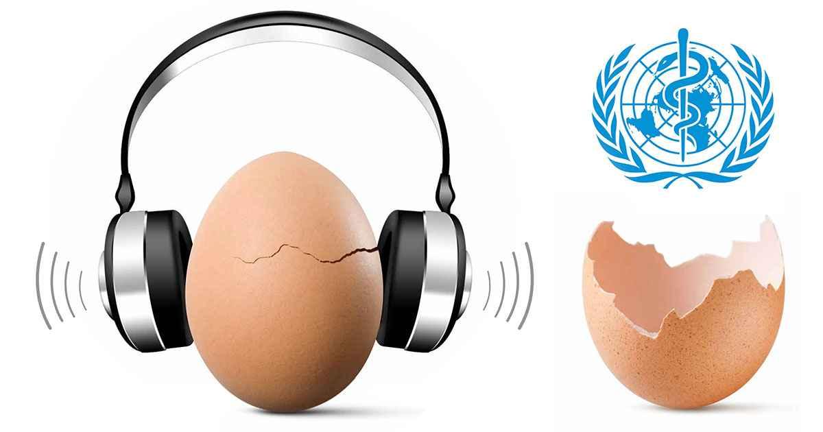 Egg Fb