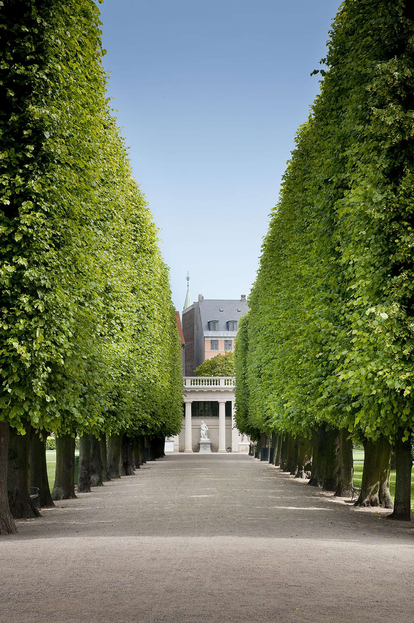 One of the many avenues in the King's Garden.