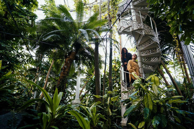 Palmehuset i Botanisk Have