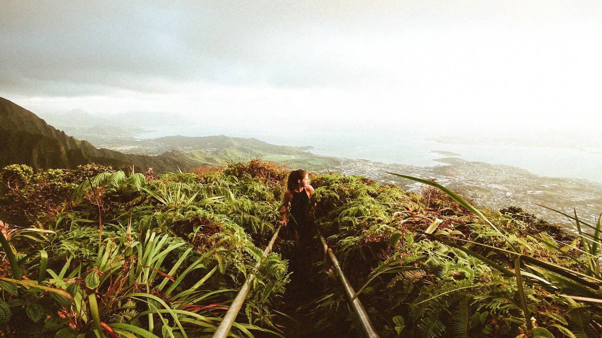Hawaii Island Adventure   EF Ultimate Break