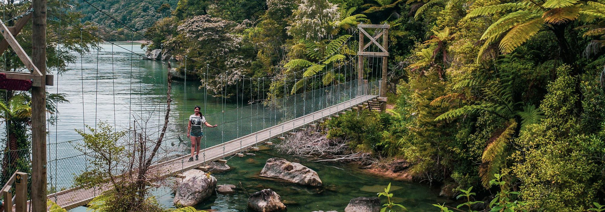Bark Bay Falls swing bridge at Abel Tasman National Park