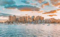 Boston Harvard Medview
