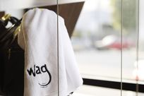 """Close-up shot of a white shelf being held up by thin cables and rods. On the shelf, there's a white towel with the word """"wag"""" embroidered in black."""