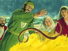 Paulus komt in Rome, 16 Bijbelplaten voor het digibord, kleuteridee.nl , Bijbelles voor kleuters.