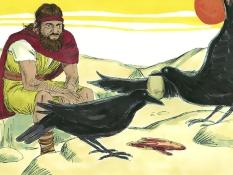 Elia en de raven, 15 Bijbelplaten voor het digibord, kleuteridee , Bijbelles voor kleuters
