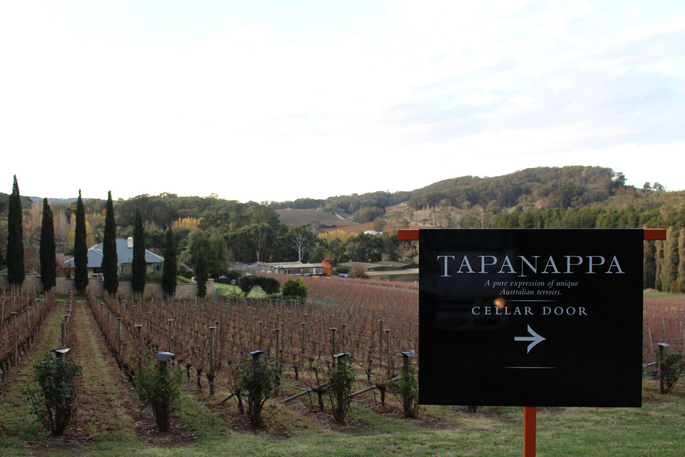 Tapanappa Wines
