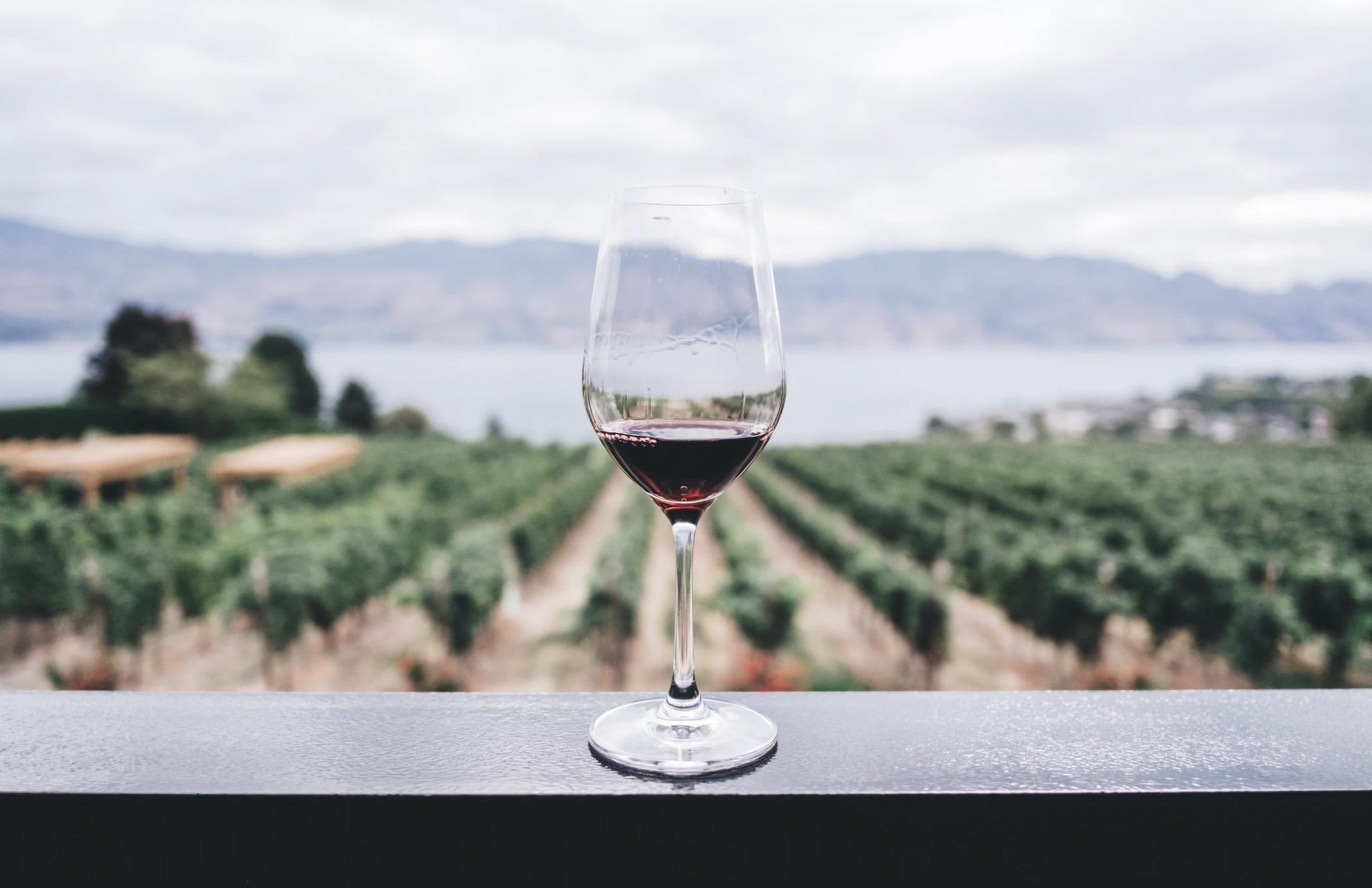 https://a.storyblok.com/f/105614/8070x5224/a80b5b2ae0/ward-wines_022.jpg