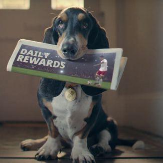 Betfair Daily Rewards