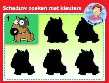 Schaduw zoeken met kleuters op digibord of computer op kleuteridee.nl, Kindergarten shadow game for IBW or computer