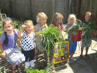 Ideeën voor de schooltuin voor kleuters week 12, kleuteridee.nl ,oogstweek, iedereen neemt zijn oogst mee naar huis