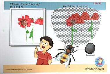 Wat ziet een facetoog van een bij, thema het oog, kleuteridee, free printable 4.