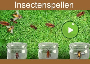 Insectenspellen, kleuteridee