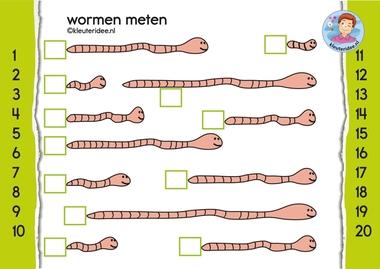 wormen meten, kleuteridee themahoek