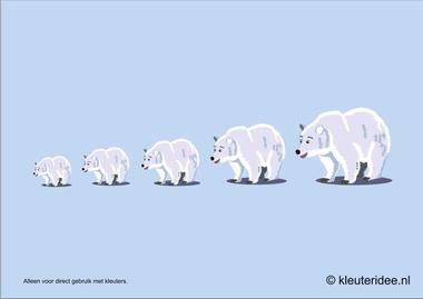 IJsberen meten met kleuters hoek voor poolonderzoekers, kleuteridee.nl , thema Noordpool & Zuidpool, free printable.