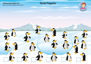 Pinguïns tellen met kleuters, juf Petra van kleuteridee.