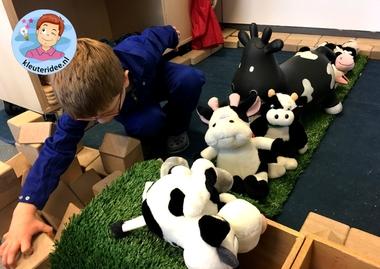 koeien in de bouwhoek, thema de koe voor kleuter, kleuteridee 3.