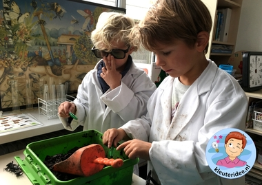 laboratorium van dieren onder de grond, kleuteridee.nl, Kindergarten laboratory for animals under the ground 11