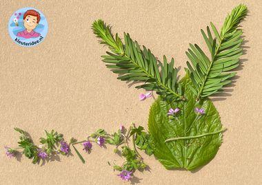 rupsen van natuurlijke materialen, thema insecten en kriebelbeestjes, kleuteridee