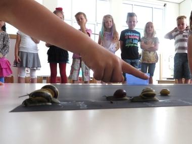 Slakkenrace met kleuters 6, thema tuincentrum, kleuteridee.