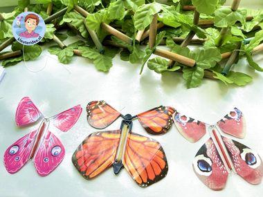 Interactieve vlindertuin, thema insecten kleuters, kleuteridee