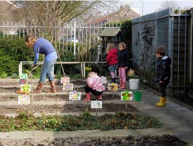 Ideeën voor de schooltuin voor kleuters week 1c, kleuteridee.nl , plantuitjes poten .