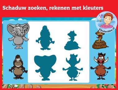 Schaduw zoeken met kleuters op digibord of computer op kleuteridee.nl, Kindergarten math game for IWB or computer