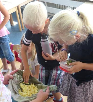 Ideeën voor de schooltuin voor kleuters week 13, kleuteridee.nl ,friet van eigen aardappeloogst