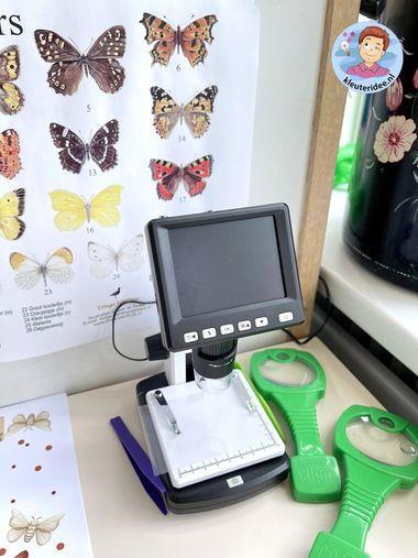 Interactieve vlindertuin, thema insecten kleuters, kleuteridee 5