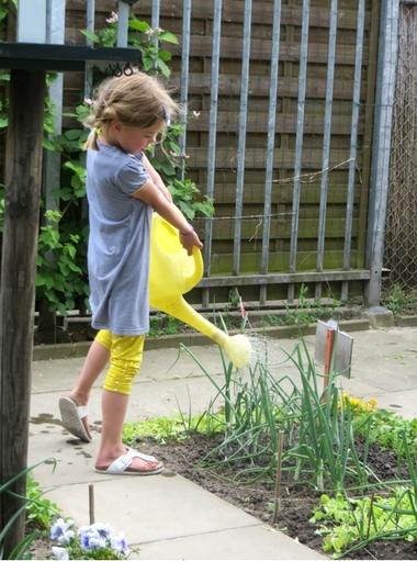 Ideeën voor de schooltuin voor kleuters week 8, kleuteridee , tuin water geven