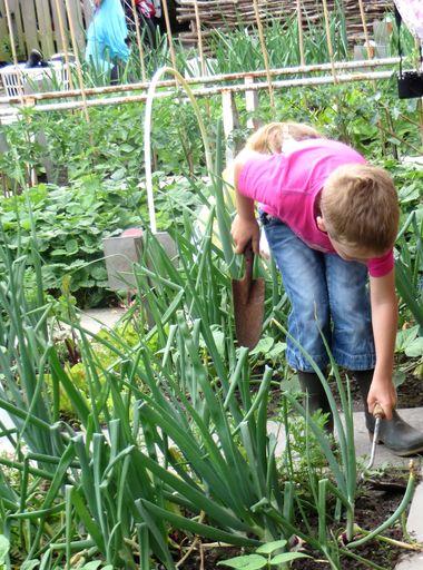 Ideeën voor de schooltuin voor kleuters week 11, kleuteridee , harken en wieden