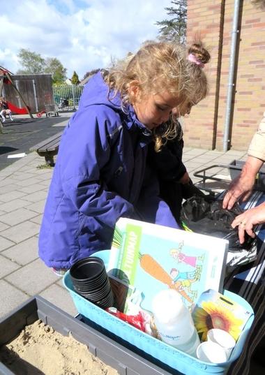 Ideeën voor de schooltuin voor kleuters week 4, kleuteridee.nl , zonnenbloemen zaaien