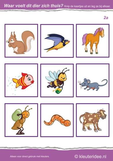 Waar voelt dit dier zich thuis 2a, kleuteridee.nl , Where the animal feels at home , free printable.