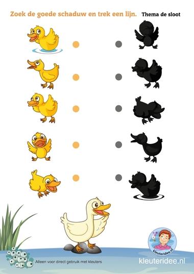 Zoek de goede schaduw met kleuters, thema de sloot, kleuteridee, Preschool pond theme, free printable.