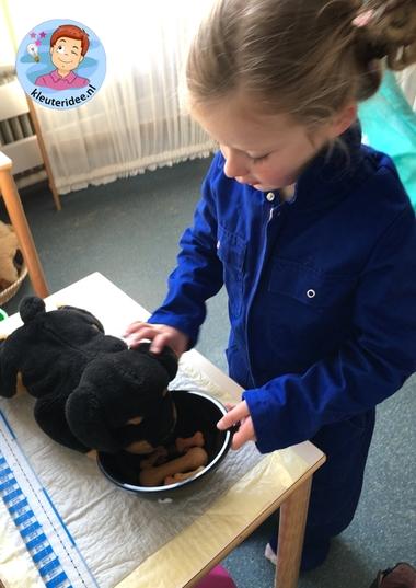 hondenasiel en onderzoekscenrum, thema de hond, Kindergarten dog roleplay, kleuteridee.nl 5
