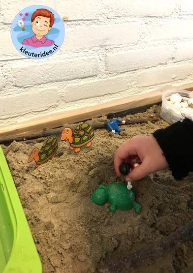 Laat eerst wat video's zien over de zeeschildpad die zijn eieren onder het zand legt. Ook hoe de jongen naar bovenkomen en naar de zee lopen (zie interactieve praatplaat hierboven). Speelplezier verzekerd!