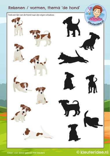 Zoek de schaduw thema de hond, kleuteridee, kindergarten Dog math, free printable k