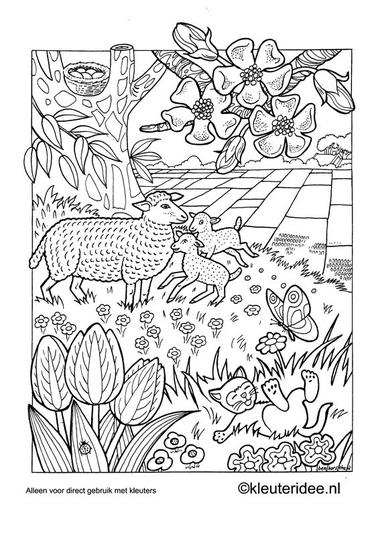 Kleurplaat lente, kleuteridee.nl , spring preschool coloring.