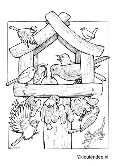 Kleurplaat vogels voeren, voederhuisje, kleuteridee.nl , feeding birds preschool coloring.