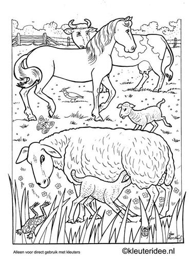Kleurplaat lente 2, kleuteridee.nl , spring preschool coloring.