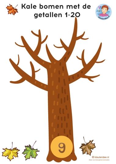 Herfst, rekenen met kleuters, kale bomen 1-20, kleuteridee