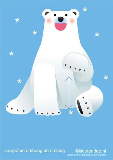 Bewegingskaarten ijsbeer voor kleuters 8, voorpoten omhoog en omlaag , kleuteridee.nl, thema Noorpool, Movementcards for preschool, free printable.
