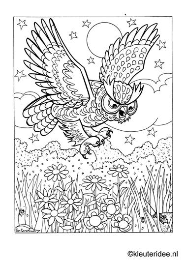 Kleurplaat uil, kleuteridee.nl , owl preschool coloring.