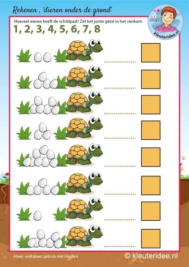 Rekenen met schildpad voor kleuters,kleuteridee, eieren tellen, kindergarten turtle maths, counting eggs, free printable.
