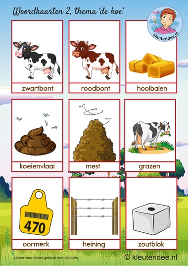 Woordkaarten 2 thema koe, kleuteridee, kleuters, cow theme Kindergarten.