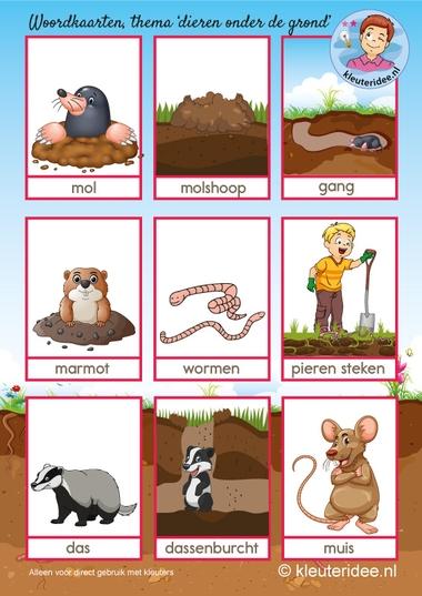 Woordkaarten, dierenonder de grond, kleuteridee, free printable.