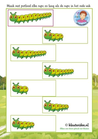 Rups even lang maken,hema insecten voor kleuters, kleuteridee.nl, free printable.